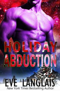 Book Cover: Holiday Abduction