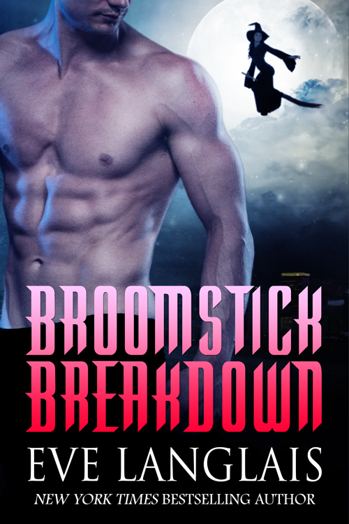 Book Cover: Broomstick Breakdown