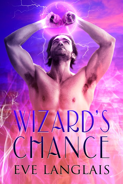 Book Cover: Wizard's Chance