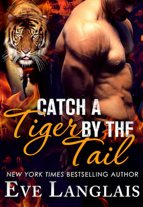 Book Cover: Catch a Tiger by the Tail
